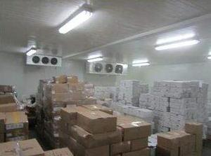 广州市皇闻贸易有限公司