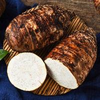 供应荔浦芋种和香芋种示范场 广西木薯种与槟榔芋种产地